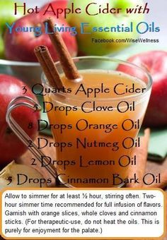 Young Living Essential Oils: Hot Apple Cider Recipe | For more information or to order Young Living Essential Oils, come visit: www.Theoildropper.com/debchausky