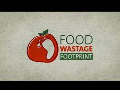 Empreinte écologique du gaspillage alimentaire...