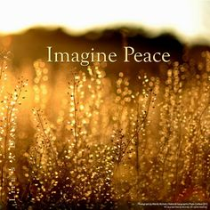 Imagine peace for the world