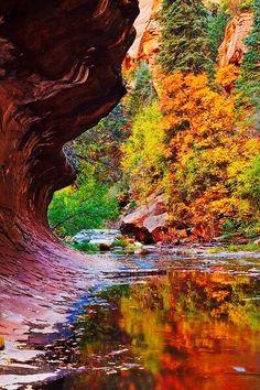 Oak Creek Canyon - Sedona, Arizona I loved this place! Sedona Arizona, Arizona Travel, Oak Creek Canyon Arizona, Places To Travel, Places To See, Magic Places, Photos Voyages, Vacation Spots, Beautiful Landscapes