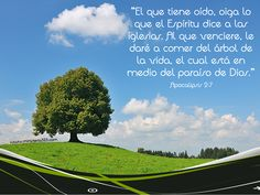 Apocalipsis 2:7
