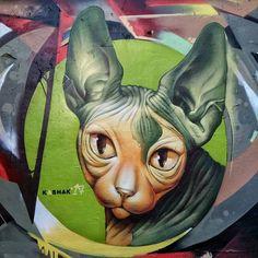 KASHAK & dem51. #kashak #art #cat #sphynxcat #graffiti #streetart