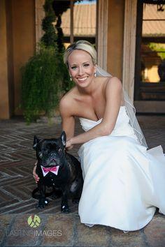 French Bulldog ring bearer | Lasting Images Photography | villasiena.cc