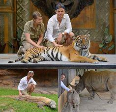 Derek and Bindi in Australia Derek Hough, Professional Dancers, Bindi, Wildlife, Australia