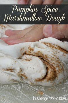 Pumpkin Spice Marshmallow Dough