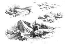 Plate 16 - James Duffield Harding (1798-1863)