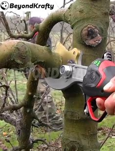 Garden Projects, Garden Tools, Wood Projects, Reclaimed Windows, Garden Shelves, Diy Shed, Cool Inventions, Useful Life Hacks, Pruning Shears