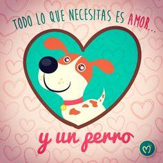 Pronto descubre con Migas un mundo para nuestras mascoticas. #Migas #Mascotas #Perros #Gatos