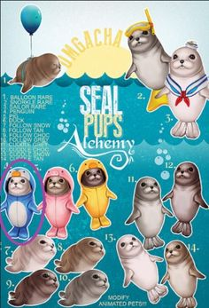 how to draw harp seal pup step by step