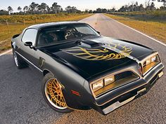 '77 Pontiac Firebird Trans-Am ~ My Daddy had one of these when I was a little girl and some of my favorite memories are riding w/ the t-tops out and listening to old country music! <3