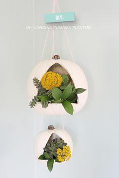 DIY Hanging Pumpkin Lanterns  Photography: Lidy D. - www.hellolidy.com  Read More: http://www.stylemepretty.com/living/2014/10/16/diy-hanging-pumpkin-planters/