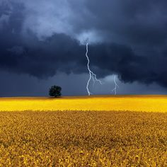 Storm Over Rapeseed Fields by Carlos Gotay, via 500px
