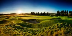 The Bear Golf Course at Grand Traverse Resort and Spa