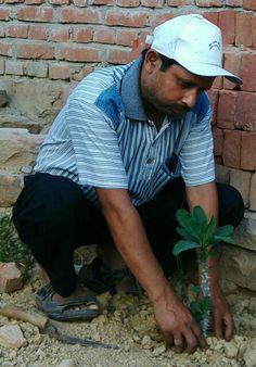 3 मार्च 2016 को 278 वे दिन लगातार पौध रोपण के क्रम में जे.पी.पुरम् कॉलोनी पटेल नगर  अनगढ़  मिर्ज़ापुर में अनुराग जी के प्लाट में यूफोर्बिया के पौध का रोपण अनिल कुमार सिंह,संस्थापक/सचिव-खेल क्रान्ति अभियान/पर्यावरण शुद्धिकरण अभियान,प्रवक्ता-शान्ति निकेतन इण्टर कॉलेज पचोखरा,मिर्ज़ापुर द्वारा किया गया।