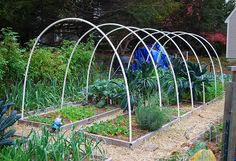 Building hoop house 2 by A Growing Tradition Blog, via Flickr