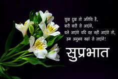114 +Hindi Whatsapp DP Images For Whatsapp - Good Morning Images Good Morning Greetings Images, Good Morning Hindi Messages, Morning Images In Hindi, Good Morning Photos Download, Latest Good Morning Images, Good Morning Image Quotes, Good Morning Beautiful Quotes, Morning Quotes Images, Hindi Good Morning Quotes