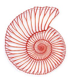 The Artwork of Meredith Woolnough: Small, Medium, Large - A Newcastle Gallery Collective Exhibition