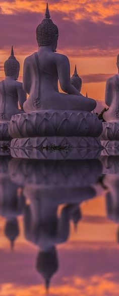 Reflection of Buddha ~ Thailand