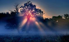 Sunset Nature  artistic HD Wallpaper