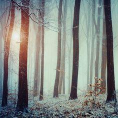 Innocent Nature by ildikoneer, via Flickr