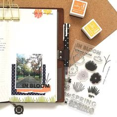 162/466: Created a simple layout using items entirely from the new @kellypurkeyshop line.