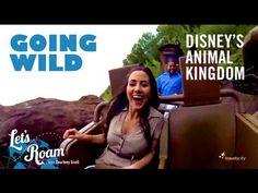Going Wild at Disney's Animal Kingdom |  Let's Roam Walt Disney World on disneybloggers.blogspot.com