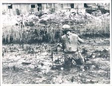 - 9th Infantry Div. Mine Sweep Rice Paddy Viet Nam War Original UPI Wire Photo
