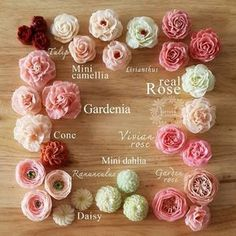Not your grocery store style buttercream roses . Flower names.