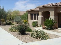 Simple front yard desert landscaping ideas with cactus plants