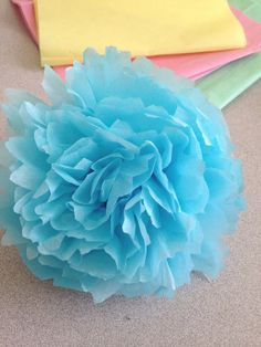 Pom Poms tissue paper pastel flwoers blue baby shower, wedding, baptism decorations