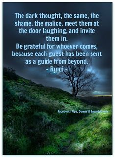 The dark thought, the same, the shame, the malice, meet them at the door laughing, and invite them in. Be grateful for whoever comes, because each guest has been sent as a guide from beyond.  - Rumi -