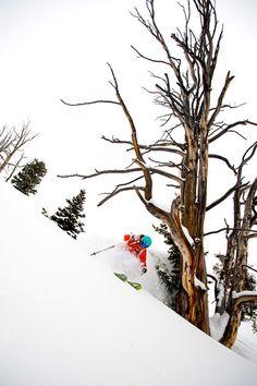 Pure powder: Caroline Gleich skis Solitude, Utah #ski #snow