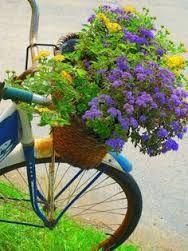 Resultado de imagem para bicicleta com cesto de flores em gifs