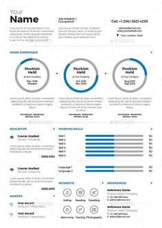 Infographic Resume Infographic  Design    Infographic