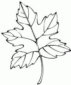 dibujos de hojas de flores de otono para colorear