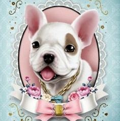 ♥ Jolie ♥ French Bulldog Puppy Love