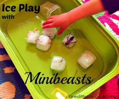 Ice play with minibeasts. Simple sensory play for babies and toddlers that love bugs!
