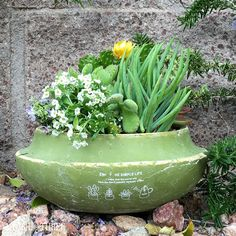 """Simple Life"" garden planter ~ fresh sage"