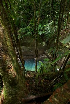 6 Cheapest Caribbean Islands That You Should Visit – Voyage Afield Great Places, Places To See, Beautiful Places, Parc National, National Parks, Jamaica, Puerto Rico, Cuba, Pointe À Pitre