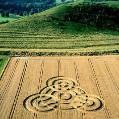 Crop Circle at Oare, Wiltshire, UK - 3 August 2000