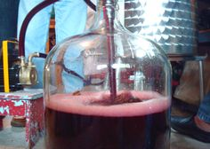 Did you know that the yeast you use can impact the sweetness of your homemade #wine?  Controlling Your Wine's Sweetness with Yeast Selection | E. C. Kraus #Winemaking Blog