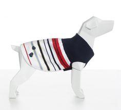 Cashmere Sweater for Stylish Dogs #AlwaysMineMilano #ItalianLifestyleForPets #fashion #style #cashmere #dog #puppy #dogcoat #cute #chihuahua #pet #pets #animals #petstagram #fashion #photooftheday  #dogoftheday #lovedogs #fashion #adorable #doglover #design