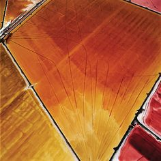 David Maisel, Terminal Mirage 13, (Ed. 4/5), 2003 (printed 2007). Dye Coupler Print, 48 x 48 inches. Collection of Nevada Museum of Art, The Altered Landscape, Carol Franc Buck Collection.