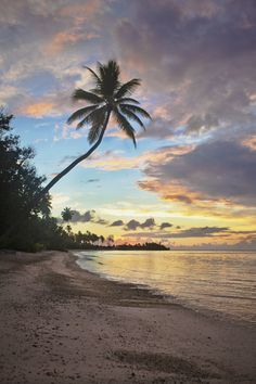 Tropical sunrise on the island of Moorea in French Polynesia.