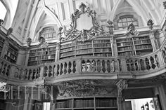 A Biblioteca  The Library