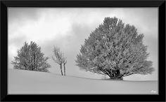 Randonnées en noir et blanc...: Ski de fond sur le plateau de Retord