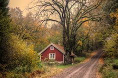 Autumn at the cottage ll... by Almqvist Photo