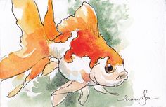 Fantail Goldfish 2 by Tracie Thompson. Second Month Of Pregnancy Effects On Mother Watercolor Pictures, Pen And Watercolor, Watercolor Animals, Watercolor Illustration, Watercolor Paintings, Watercolours, Fantail Goldfish, Goldfish Pond, Guache