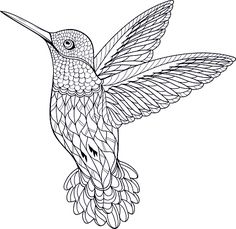 High Quality Coloring Page Hummingbird