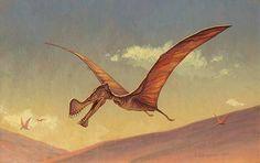 Afbeeldingsresultaat voor Tropeognathus